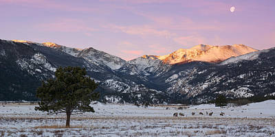Photograph - Moraine Park - Rocky Mountain National Park by Aaron Spong