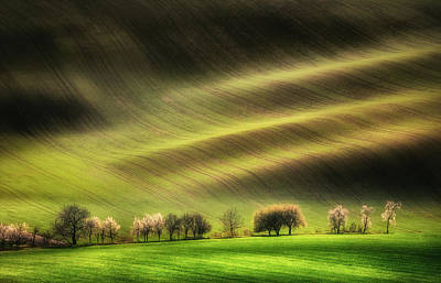 Moravia Photograph - Moravian Fields by Piotr Krol (bax)