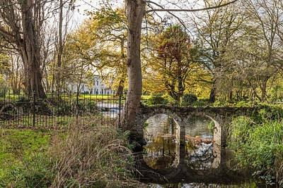 Photograph - Morden Hall Park by Matt Malloy