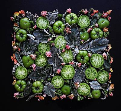Photograph - More Green Tomato Art by Sarah Phillips