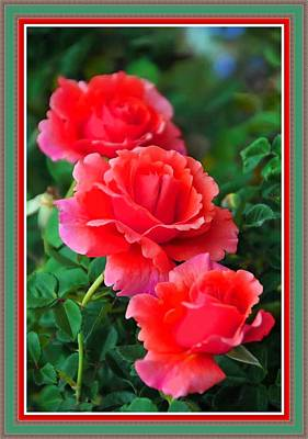 Kids Cartoons - More Roses For Anne Catus 1 no. 5 H B With Decorative Ornate Printed Frame. by Gert J Rheeders