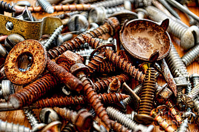Photograph - More Rustey Screws I by Debbie Portwood