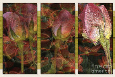 Roses Digital Art - More Than One by Sue Gardiner