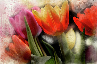 Digital Art - More Tulips by Peggy Cooper