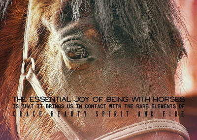 Morgan Horse Quote Art Print by JAMART Photography