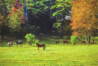 Middlebury Digital Art - Morgan Horses In Autumn Pasture by Rusty Smith
