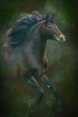 Digital Art - Morgan Stallion by Posey Clements