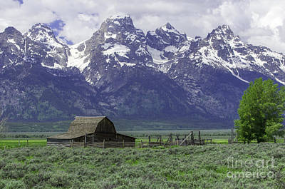 Photograph - Grand Tetons by Louise Magno