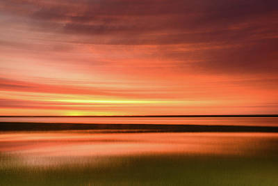 Photograph - Morn At The Marsh by Michael Blanchette
