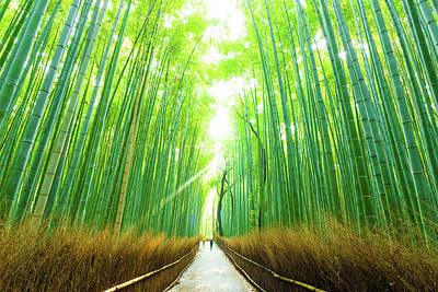 Morning Arashiyama Bamboo Forest People Walking Art Print