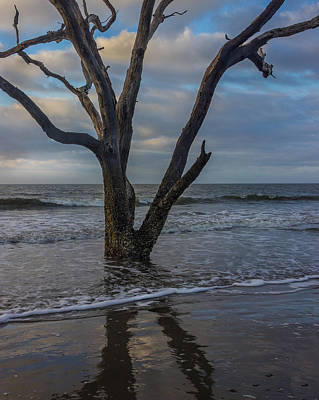 Photograph - Morning At Botany Bay by James Woody