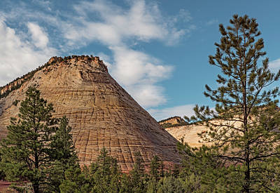 Photograph - Morning At Checkerboard Mesa by Loree Johnson
