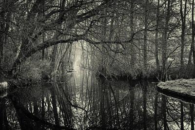 Photograph - Morning At Clingendael by Joe Doherty