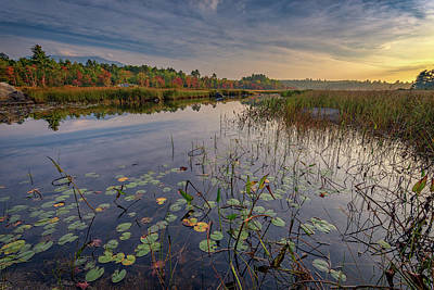 Photograph - Morning At Compass Pond by Rick Berk