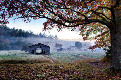 Photograph - Morning At Dan's by Lana Trussell