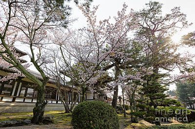 Horyu-ji Photograph - Morning At Horyu-ji Temple by Rhonda Krause