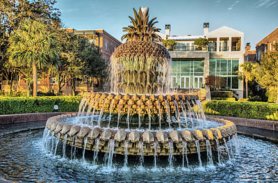 Photograph - Morning At Pineapple Fountain by Lynne Jenkins