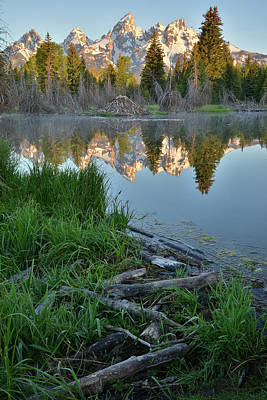 Photograph - Morning At Schwabacher Landing by Ray Mathis