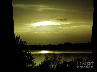 Photograph - Morning At The Lake by D Hackett