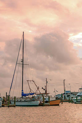 Photograph - Morning At The Marina 2 by Leticia Latocki