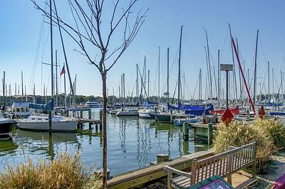 Photograph - Morning At The Marina by Charles Kraus
