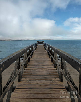 Photograph - Morning At The Pier by Sandra Bronstein
