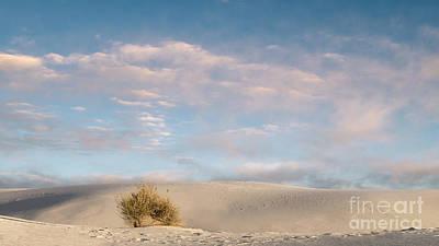 Morning At White Sands National Monument Art Print
