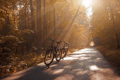 Falltime Photograph - Morning Autumn Forest by Konstantin Sevostyanov