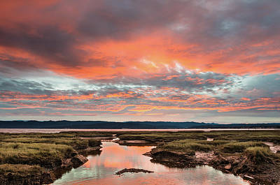 Photograph - Morning Awakens Over Arcata Bay by Greg Nyquist