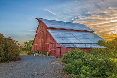 Brentwood Barn Photograph - Morning Barn by Robin Mayoff