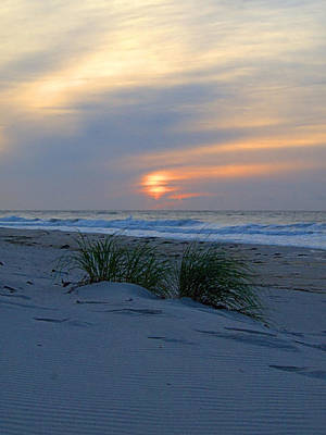Photograph - Morning Beach by  Newwwman