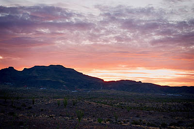 Photograph - Desert Morning Big Bend National Park by Rospotte Photography