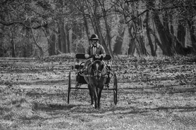 Horse And Buggy Digital Art - Morning Buggy Ride In Bluebell In Black And White by Bill Cannon