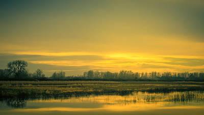 Photograph - Morning Burst by Don Schwartz