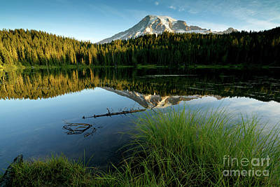 Photograph - Morning Calm by Beve Brown-Clark Photography