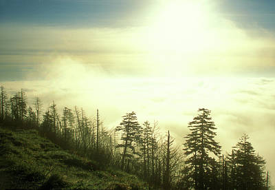 Photograph - Morning Clouds Clingmans Dome by John Burk