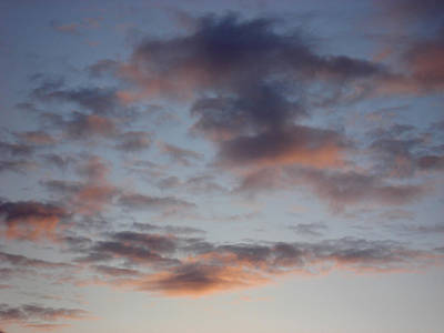 Morning Clouds Art Print by Marilynne Bull