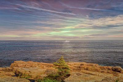 Photograph - Morning Coast Tour by John M Bailey