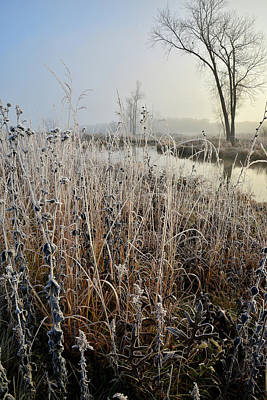 Photograph - Morning Comes To A Frosted Glacial Park by Ray Mathis