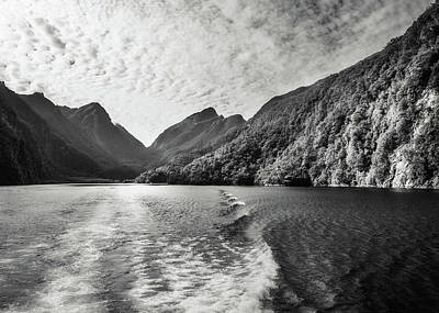 Photograph - Morning Cruise At Doubtful Sound In Black And White by Daniela Constantinescu
