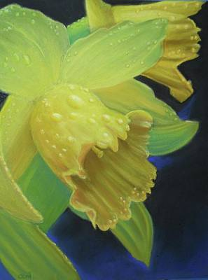Morning Daffodil Art Print by Joan Swanson