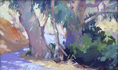 Morning Dance - Catalina Island Art Print