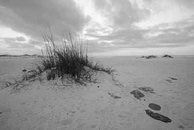 Photograph - Morning Dunes  by John McGraw