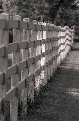 Photograph - Morning Fence In Black And White by Dan Sproul
