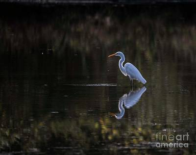 Photograph - Morning Fishing by David Bearden