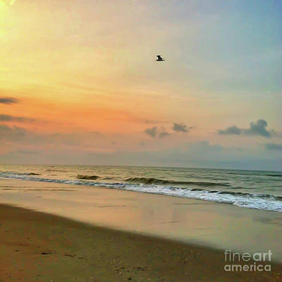 Photograph - Morning Flight by Kerri Farley