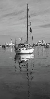 Photograph - Morning Float In Black And White by Debra and Dave Vanderlaan
