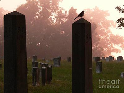 Morning Fog Along The Tennessee Art Print by David Bearden