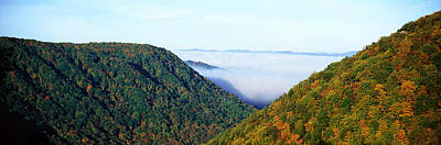 Morning Fog At Sunrise In Autumn Art Print by Panoramic Images