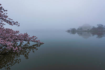 Morning Fog At The Tidal Basin Art Print by Michael Donahue